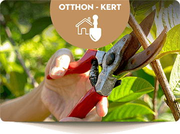 Otthon - kert - háztartás