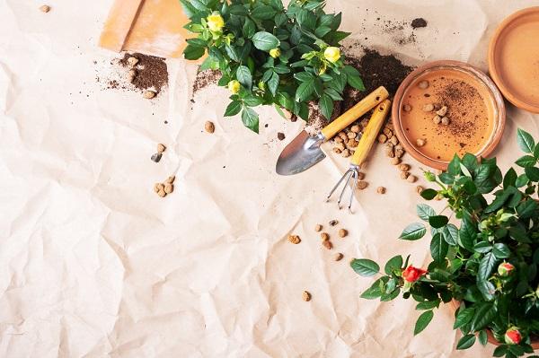 Készülődés a kerti munkákra – a megfelelő kerti eszközök beszerzése